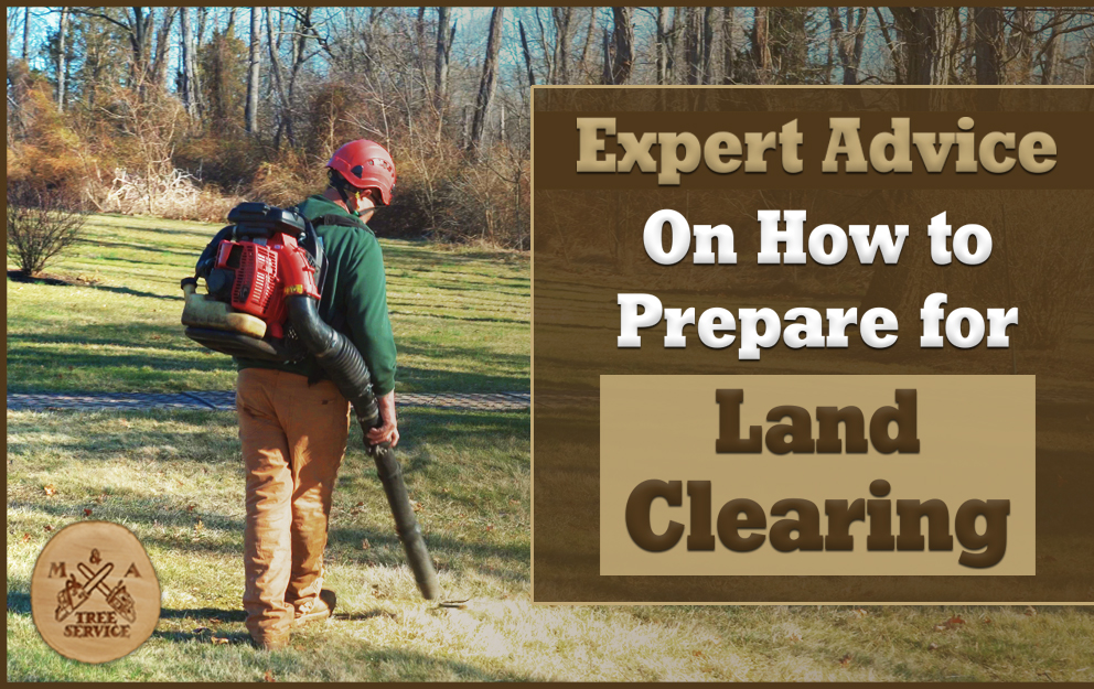 Advice From A North Plainfield, NJ Land Clearing Expert On How to Prepare For Land Clearing